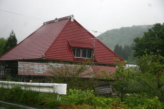 森ガールIMG_6868.JPG